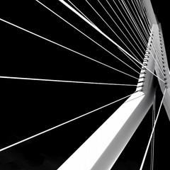 <strong>Rotterdam</strong><br><p>Erasmusbrug</p>