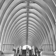<strong>België</strong><br><p>Station Luik</p>