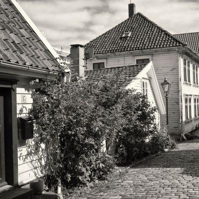<strong>Noorwegen</strong><br><p>Stavanger</p>