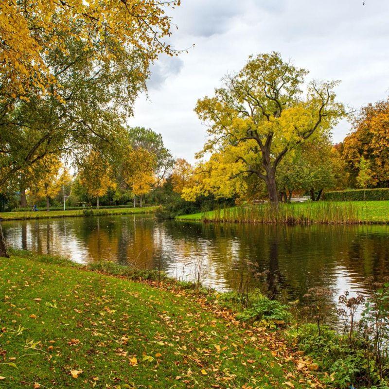 <strong>Leiden</strong><br><p>Zoeterwoudsesingel - Plantsoen</p>