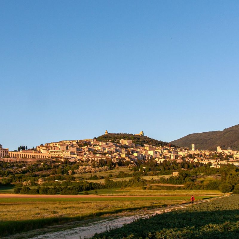 <strong>Italië</strong><br><p>Toscane-Assisi</p>