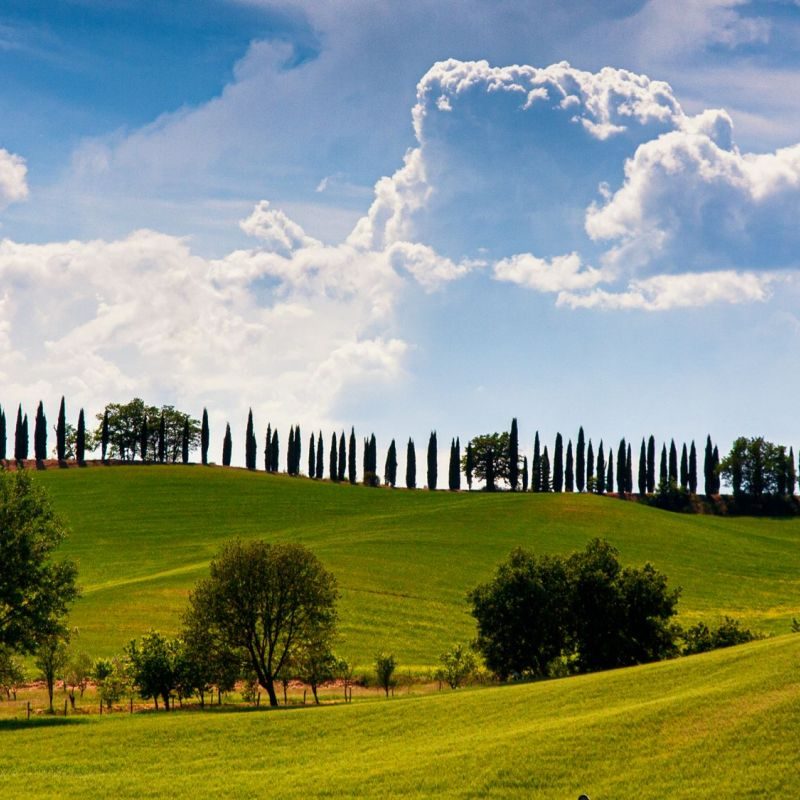 <strong>Italië</strong><br><p>Toscane</p>