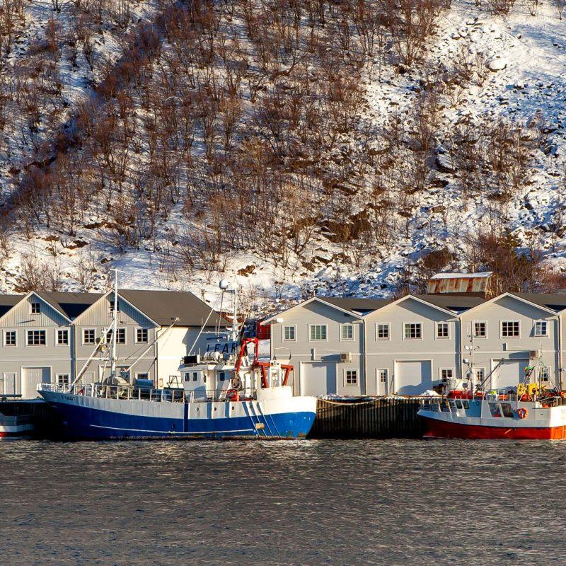 <strong>Noorwegen</strong><br><p>Senja</p>