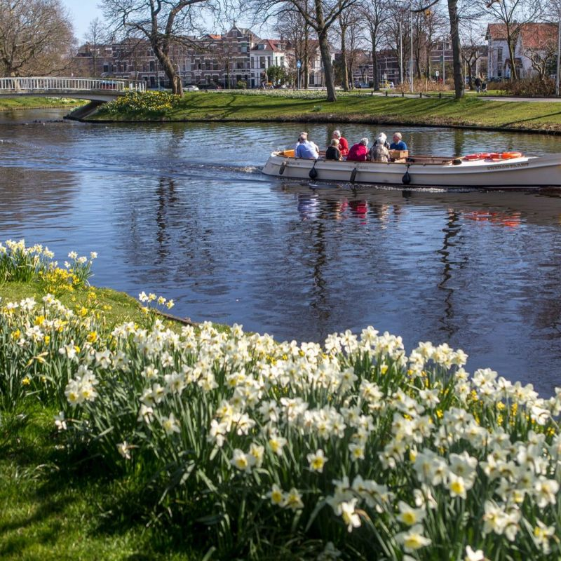 <strong>Leiden</strong><br><p>Plantsoen- Zoeterwoudsesingel</p>