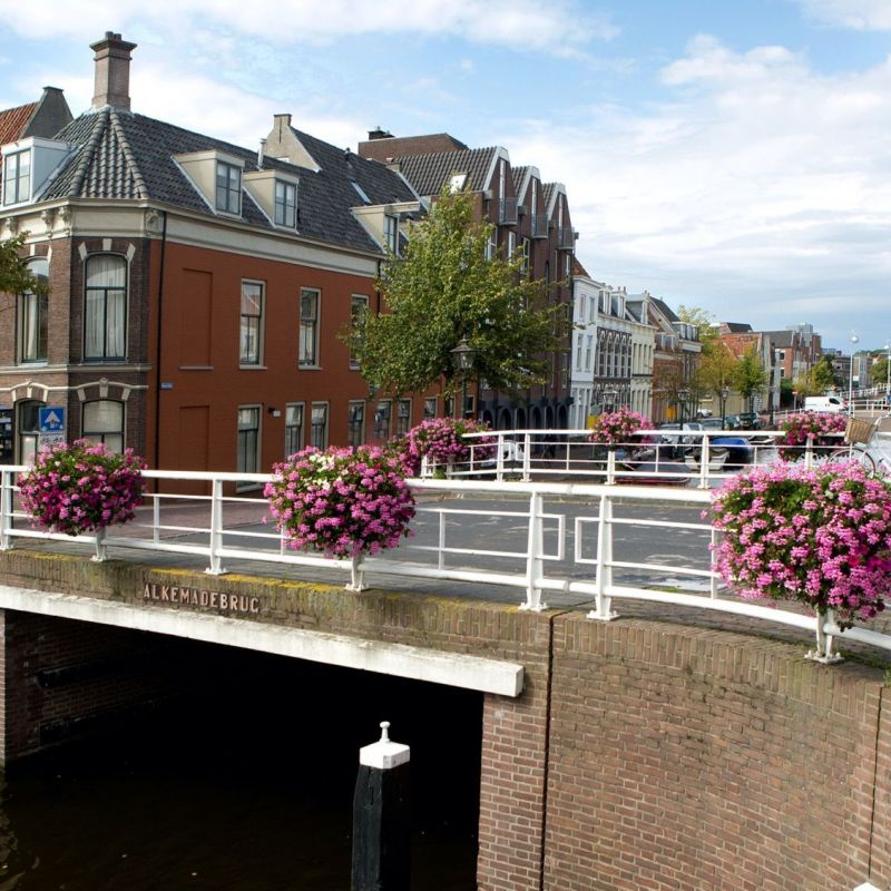 <strong>Leiden</strong><br><p>Oude Singel - Mare</p>