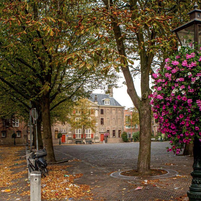<strong>Leiden</strong><br><p>Pieterskerkplein</p>