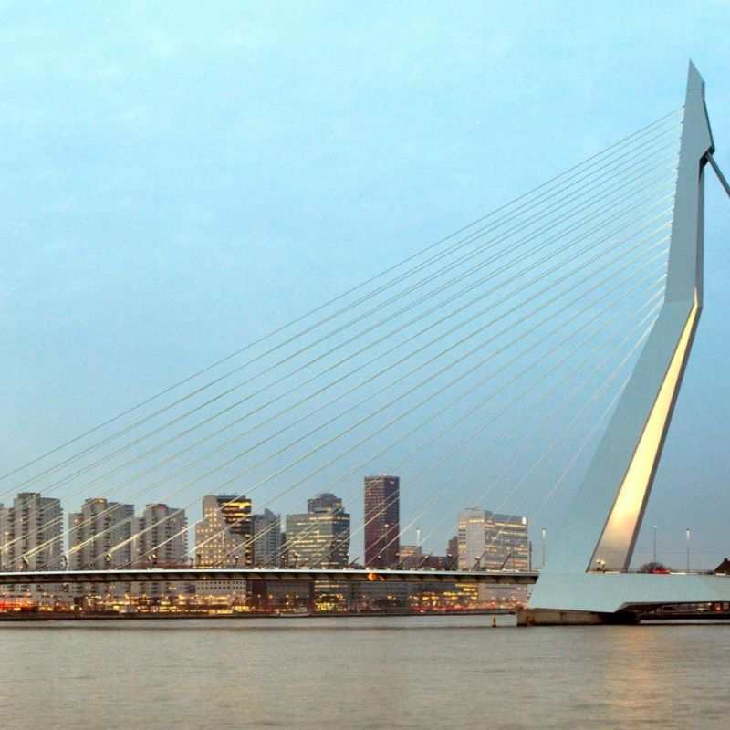 <strong></strong><br><p>Rotterdam</p>